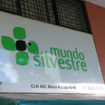 Mundo Silvestre, CLN 402, Norte, Bloco A, Asa Norte, Comércio Brasilia