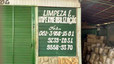 Photo of Limpeza e Impermeabilização, Polo Verde, Viveiro de Plantas, Lago Norte