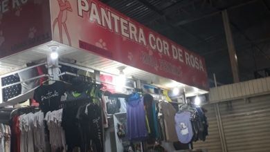 Pantera Cor de Rosa Feira dos Goianos, Avenida Hélio Prates, Taguatinga Norte, Comércio de Brasília, DF