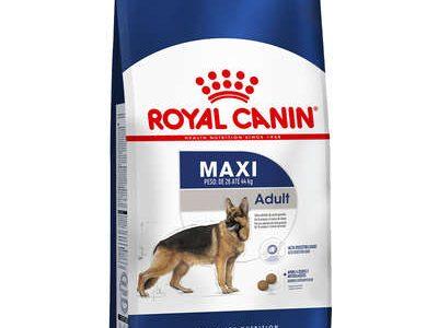 Ração Royal Canin Maxi Adult para Cães Adultos Grandes a partir de 15 Meses de Idade