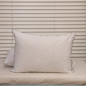 Travesseiro Neo Ecopluma 50x70cm