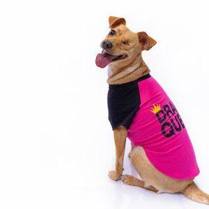 Camiseta Dog Drama Queen Roxo GG