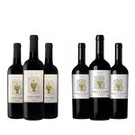 Kit de Vinhos Tintos Chilenos Tierra Firme Cabernet Sauvignon e Carménère 6 garrafas 750ml