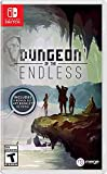 Dungeon of The Endless - Nintendo Switch