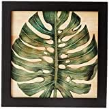 Arte Maníacos Quadro Decorativo em Madeira Costela de Adão Central - 20x20cm (Moldura caixa em laca preta)