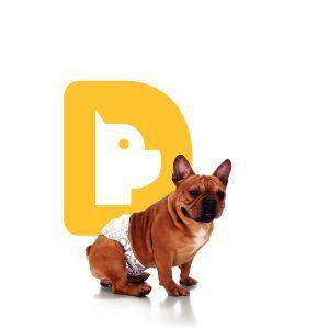 Fralda Faixa Higiênica para cães Macho Dog's Care - M - 12 Unidades