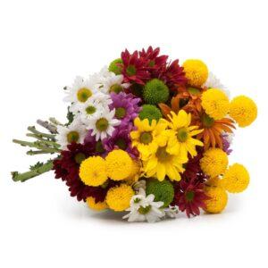 Buquê Flores do Campo Coloridas G