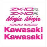 Adesivo Protetor Kawasaki Ninja zx 10r Pink