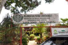 Floricultura Oréades, Polo Verde, Viveiro de Plantas, Lago Norte